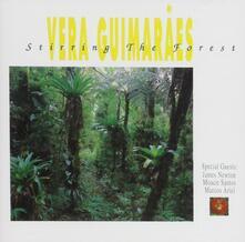 Stirring the Forest - CD Audio di Vera Guimaraes