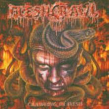 Crawling in Flesh - CD Audio di Fleshcrawl