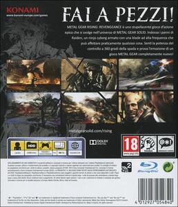 Metal Gear Rising: Revengeance - 13