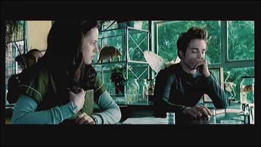 Scene It? Twilight - 9