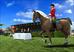 Videogioco Riding Star Personal Computer 3