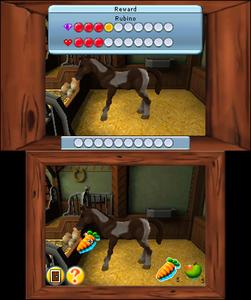 Videogioco Io e i miei cuccioli Nintendo 3DS 5