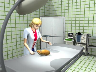 Clinica dei Cuccioli 3D in Australia - 7