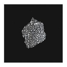 Festnetz Ep - Vinile LP di Ed Davenport