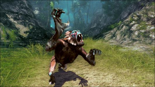 Videogioco Risen 2: Dark Waters Xbox 360 1
