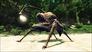 Videogioco Risen 2: Dark Waters Xbox 360 5