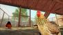 Videogioco Farm Expert 2016 Personal Computer 7