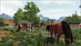 Videogioco Farm Expert 2016 Personal Computer 9