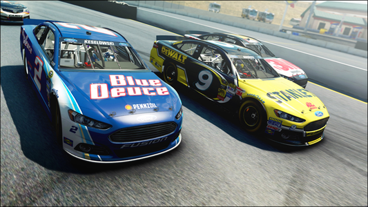 Videogioco NASCAR '14 Personal Computer 3