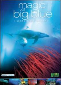 Magic of Big Blue (3 DVD) - DVD