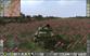 Videogioco Steel Armor: Blaze of War Personal Computer 2