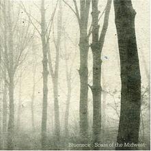 Scars of the Midwest - Vinile LP di Blueneck