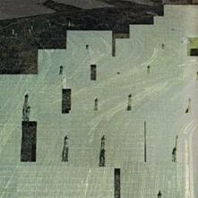 All Things in Common - Vinile 10'' di Petrels