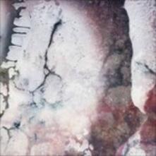 Outer Envelopes - Vinile LP di Multicast Dynamics