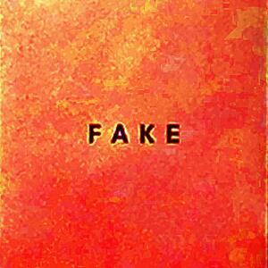 Fake - Vinile LP di Die Nerven
