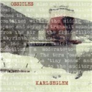 Ossicles - Vinile LP di Karl Seglem