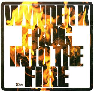 Into the Fire - Vinile LP di Wynder K. Frog