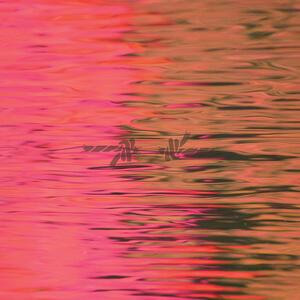 Dead Reflection - Vinile LP di Silverstein