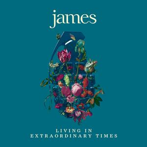 Living in Extraordinary Times - Vinile LP di James