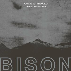 You Are Not the Ocean. You Are the Patient - Vinile LP di Bison