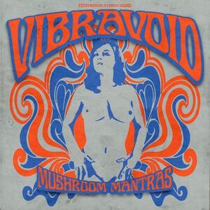 Mushroom Mantras - Vinile LP di Vibravoid
