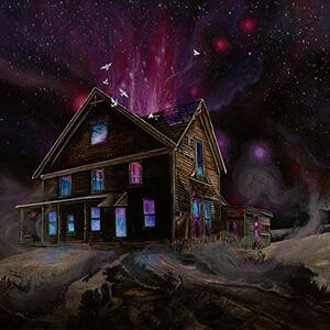 Suspended in Reflections - Vinile LP di Ancestors