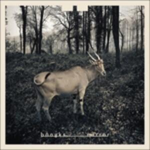 Mirror - Vinile LP di Bangks