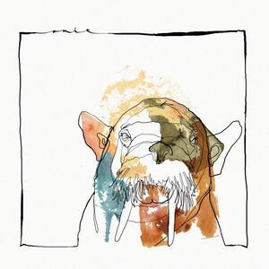 Lucid Dreaming - Vinile LP di Quantum Collage
