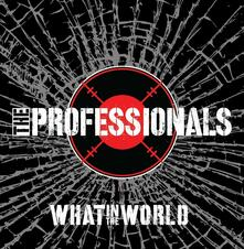 What in the World - CD Audio di Professionals
