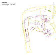 What Another Man Spills - CD Audio di Lambchop