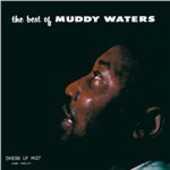 Vinile The Best Muddy Waters