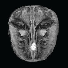 Die Gesange des Maldoror - CD Audio di Hans Joachim Irmler,Carl Oesterhelt