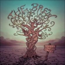 Shake the Tree - Vinile LP di Brew