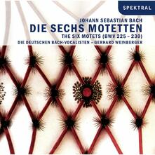 Die Sechs Motetten - CD Audio di Johann Sebastian Bach