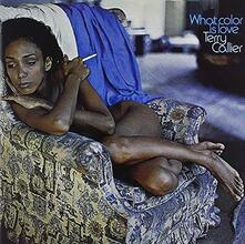 What Color Is Love (Japanese Edition) - CD Audio di Terry Callier