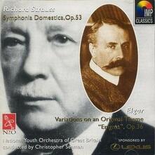 Sinfonia Domestica - CD Audio di Richard Strauss