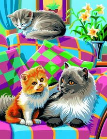 Painting By Numbers Junior. Cats
