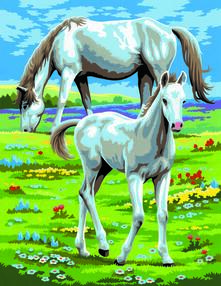 Painting By Numbers Junior. Horses