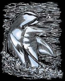 Artfoil Silver, Delfino. 0608