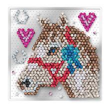 Set Paillettes Sequin Art. Cavallo