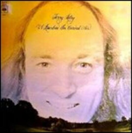A Rainbow in a Curved Air (Remastered Edition) - CD Audio di Terry Riley