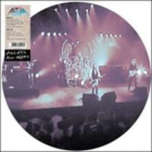 Access All Areas (Picture Disc - Limited Edition) - Vinile LP di Asia