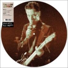 Access All Areas (Picture Disc) - Vinile LP di Gallon Drunk
