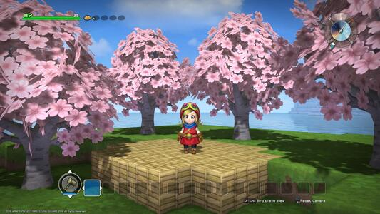 Dragon Quest Builders Day One Edition - PS4 - 9