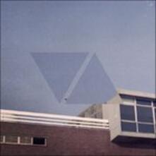Visual Acuity - Vinile LP di Raffertie