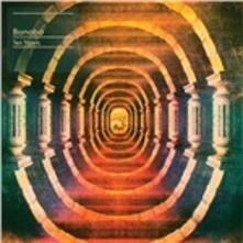 Ten Tigers - Vinile LP di Bonobo