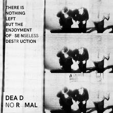 There Is Nothing Left but the Enjoyment - Vinile LP di Dead Normal