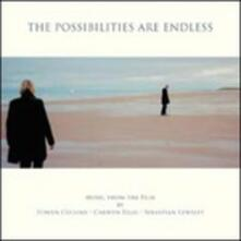 The Possibilities Are Endless - Vinile LP di Edwyn Collins