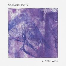 A Deep Well - Vinile LP di Cavalier Song