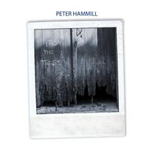 From the Trees - Vinile LP di Peter Hammill